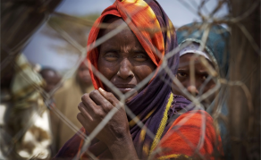 Kenya: What the Future Holds for The World's Largest Refugee Camp