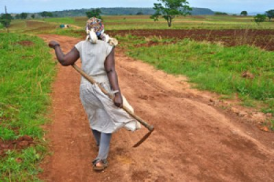 Josephine Mnisi a smallholder farmer in Shewula Village, in Swaziland's eastern Lubombo Region.