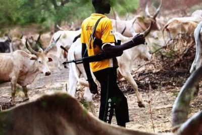 Fulani herdsman (file photo).