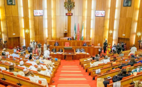 Hope Rises for 2018 Budget as Nigerian Senate Receives Report