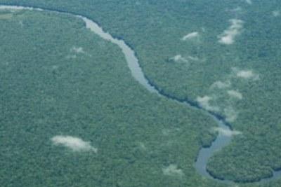 La RDC, avec la moitié des forêts et des ressources en eau de l'Afrique
