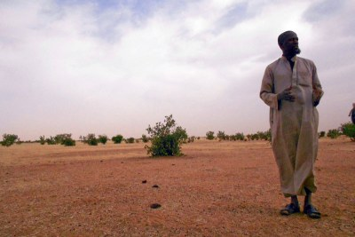 Cheikh Tijani lives on a plain that should be used as pasture for animals, but lack of rain means the pasture is scarce.