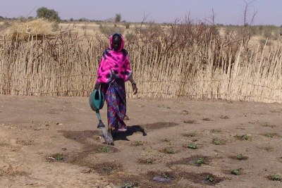 Fatna Bakhit from northern Chad lost most of her crops due to poor harvest.