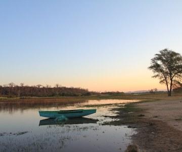 Zambia's Malaria Trackers