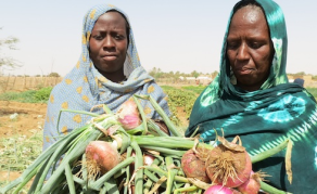 U.S.$21 Million Grant to Boost Mauritania's Food Security