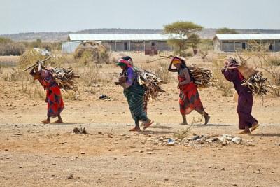 Sudanese Refugees in Ethiopia (file photo).