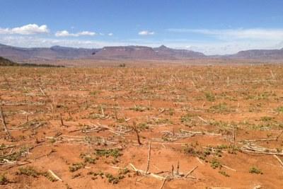 Terres stériles en raison de la sécheresse provoquée par El Niño dans le pays d'Afrique australe du Lesotho.
