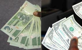 Zimbabwe Zanu Pf Admits Currency Chaos