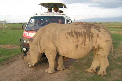 Tourists take a closer look at a northern white rhino at the Ol Pejeta Conservancy (file photo).