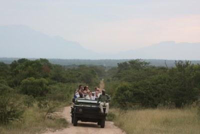 Safari in the Kruger National Park (file photo).