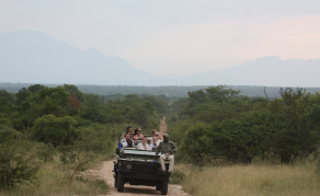 South Africa Marks Tourism Month With Free Entry at Game Parks