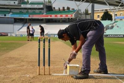 Cricket pitch (file photo).