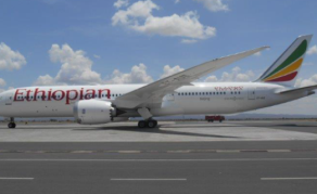 Sell Ethiopian Airlines Stake to African Govts, CEO Urges