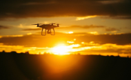Can Drones Alone Save Africa's Elephants?