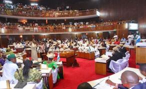 Chaos in Sierra Leone's Parliament