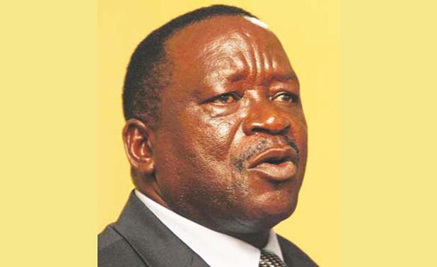 Zimbabwe: Join Opposition, Earn Respect You Deserve, Matemadanda Told