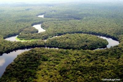 Rivière dans le parc national de la Salonga, Forêt équatoriale