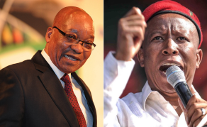 Can 'Something Positive' Still Come From South Africa's Malema?