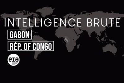 Corruption, surexploitation et évasion fiscale. Et ce n'est que le début. Dans le rapport publié récemment par EIA, intitulé Commerce toxique : La criminalité forestière au Gabon et en République du Congo qui contamine le marché des États-Unis, nous avons exposé comment le Groupe Dejia, un conglomérat de sociétés affiliées sous le contrôle du magnat chinois Xu Gong De, a violé de manière répétée la plupart des lois élémentaires de la gouvernance forestière au Gabon et en République du Congo.