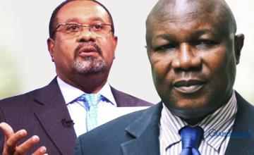 Le vice-président et le ministre des Forêts du Gabon limogés