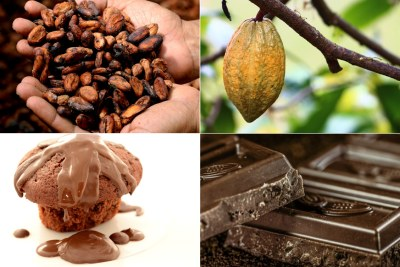 Cocoa products (file photo).