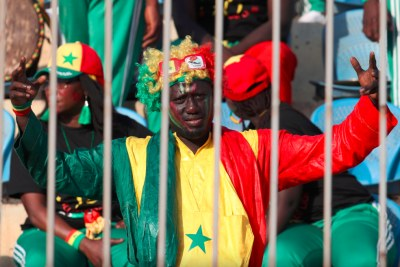 Supporter Sénégalais pendant le match Sénégal - Bénin