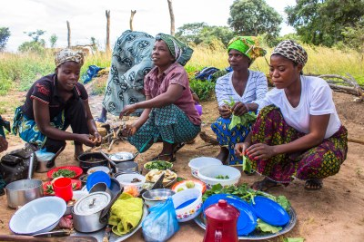 At a food fair in Luwingu, Zambia women display items they regularly forage and cultivate. Forest foods are diverse and nutrient-rich (file photo).